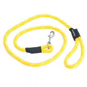 Climbers Dog Leash – Yellow 1.5M (6 Feet)