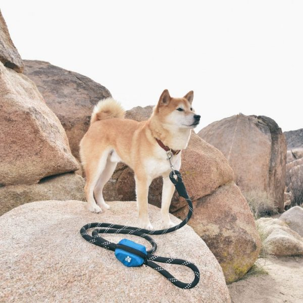 zippy paws leash bag dispenser