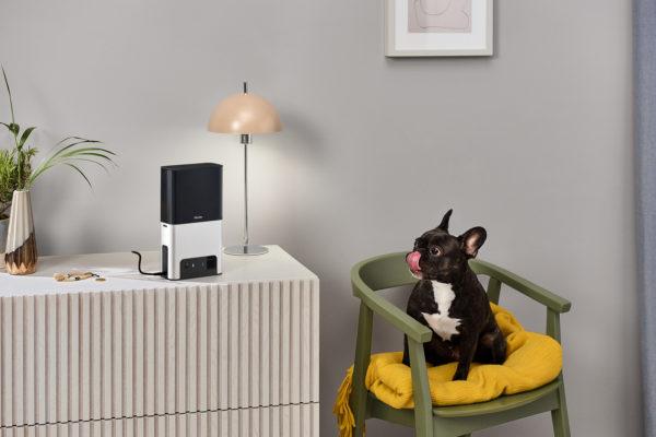 Petcube Bites 2 Pet Cam and Treat Dispenser