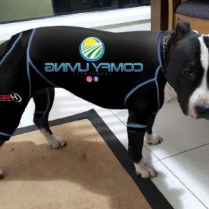Staffy Canine Anxiety Suit