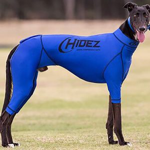 Greyhound Anxiety Suit - Blue