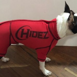 Boston Terrier Dog Anxiety Suit
