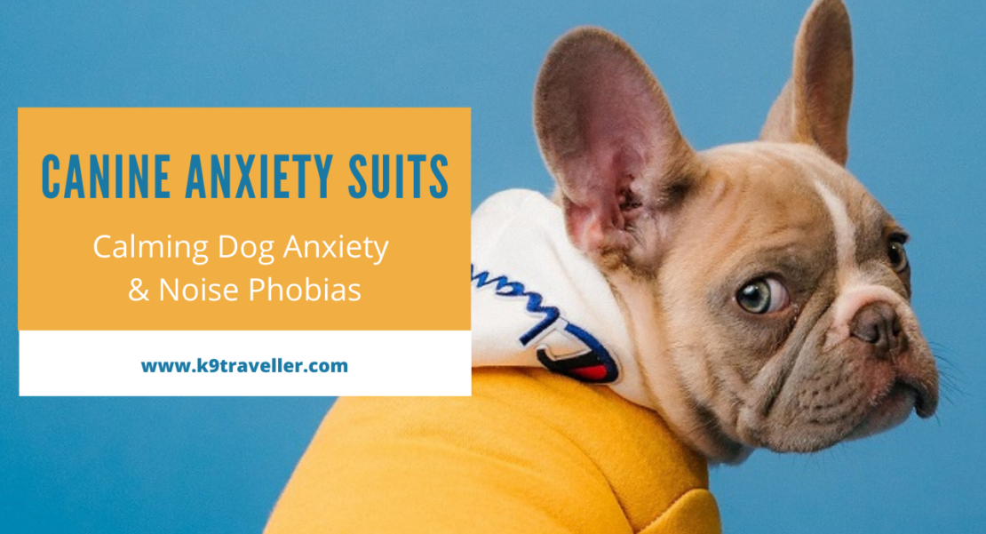 Calming Dog Anxiety & Noise Phobias